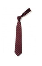 St Marys Junior Tie